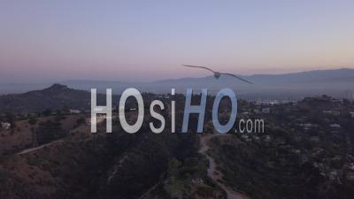 Sur Les Collines D'hollywood Au Lever Du Soleil Avec Vue Sur Les Collines Et La Vallée Et Les Lignes électriques à Los Angeles View 4k - Vidéo Par Drone