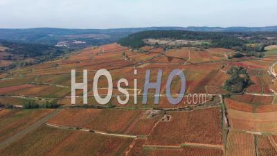 Aerial View The Vineyard Of Pommard In Burgundy In Autumn Filmed By Drone
