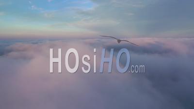 Vol Au-Dessus Des Nuages - Vidéo Par Drone