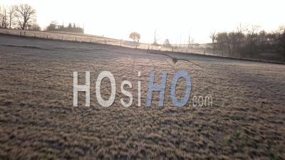 Vineyards Near Bordeaux In Winter, Video Drone Footage