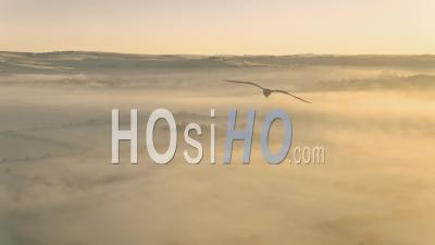 Over Morning Fog - Video Drone Footage